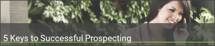 The Smart Salesperson_s Guide to Successful Prospecting