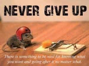 rdc_funny_motivational_q