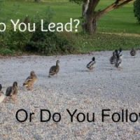 13 Ways to be a Leader People Want to Follow — NCMA
